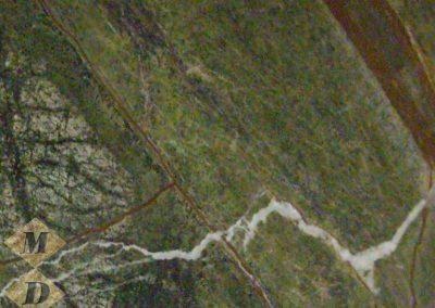 rain-forest-green-b972596-1