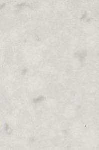 Misty-Carrera81751