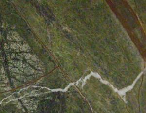 Rain-forest-Green-B972596